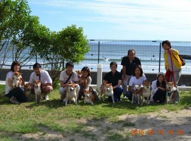 柴犬オフ会(南知多 ラ・コーダ)